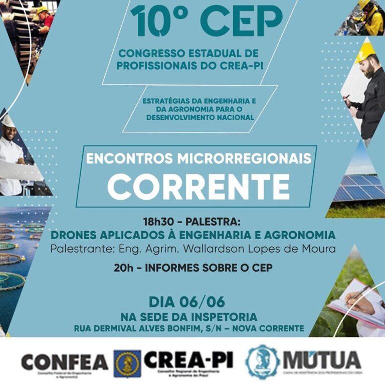 Crea-PI promove Encontro Microrregional do 10º CEP em Corrente
