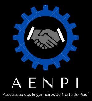 Associação de Engenheiros é criada e representa profissionais do Norte do Piauí